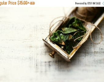 CHRISMAS IN JULY 20-26.07 Woodland wedding favors rustic heart magnets cottage chic guest favors bridal shower mossy green sap bronze brown