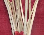 """22 Long Driftwood Pieces, 13"""" to 21"""" Drift Wood Craft Supplies, Beach Wedding Decor, Mobiles, Dream Catchers, Bouquets"""