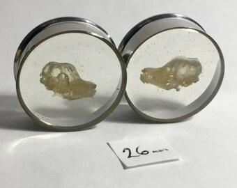 Floating Skulls REAL beetle Cleaned Bat Skull Specimen PAIR Resin Taxidermy Double Flare Steel Tunnel Gauge Plugs 26mm