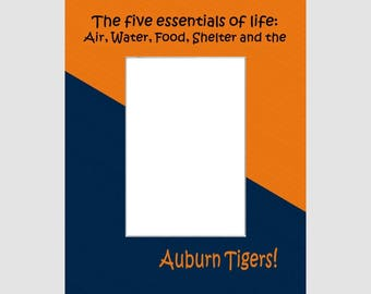 Auburn University Picture Frame Photo Mat  Unique School Graduation Gift Personalized 5 Essentials