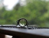 fern bracelet, terrarium bracelet, natural jewelry, woodland bracelet, real flower bracelet, dried flower bracelet