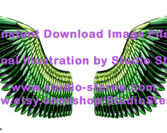 Drawing fantasy bird angel wing design feathers color 5 black green watercolor instant download image file print cut make create dolls