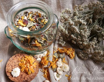 Menopause herbal infusion ARTEMISIA RITUAL ~ Herbal Alchemy