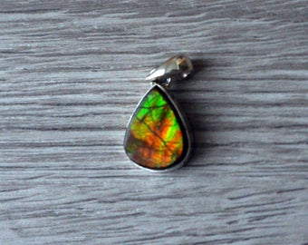 Natural Canadian Ammolite and Sterling Silver Pendant