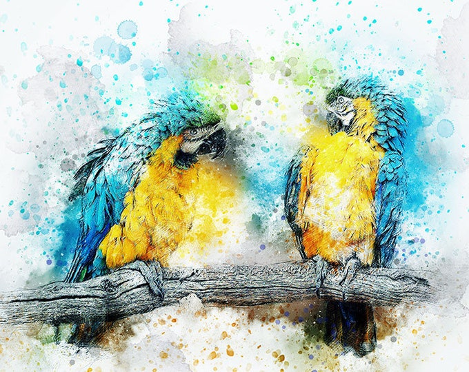 water color parrot painting art print
