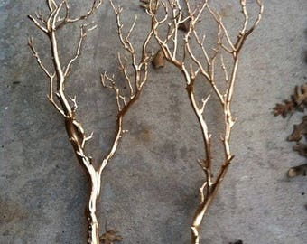 Gold Foil Plated Branches