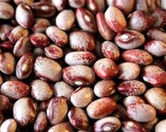Mayflower Bean, old heirloom  20+ Seeds, rare bean brought by Mayflower Pilgrims