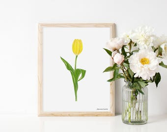 Art print with yellow tulip, illustration by Joannie Houle