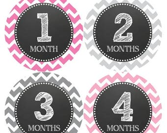 Monthly Baby Stickers Baby Month Stickers Baby Girl Month Stickers Monthly Photo Stickers Monthly Milestone Stickers 069