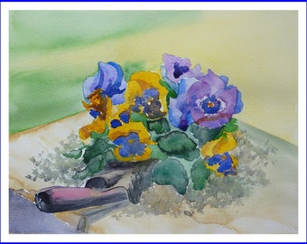 Watercolor - before planting