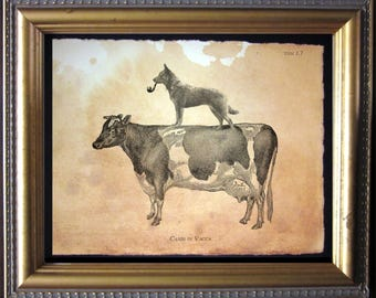 Australian Cattle Dog Riding Cow - Vintage Collage Art Print on Tea Stained Paper -  dog art - dog gifts - dog christmas gift