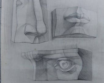 Original Drawing Academical Anatomy  Vintage Pencil  Dark Tone Picturе  Classical Sculpture Parts of the Face.