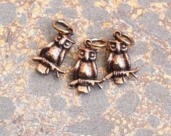 Small Bronze Owl Charm, Bird Charm, Bronze Owl Charm, Tiny Owl Charms, Bronze Charms, Owl Earrings, Owl Pendants, Pairs, 13x10mm, AK15-020