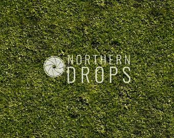 Photography Backdrop - DARK GREEN GRASS background - Dark green photo backdrop - Dark green grass printed backdrop