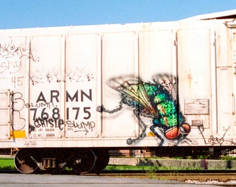 Fly: Train are, graffiti. Frame not included. Individually photographed and printed by Frank Heflin