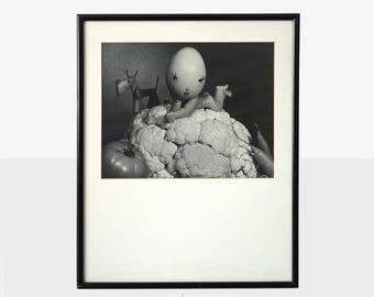 original henry rox photograph, midcentury art photograph, vegetable photosculpture, henry rox art, b&w fine art photograph, henry rox