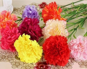 Carnation Seeds in Mix  Fresh seeds 0.40gr Approx 150 seeds
