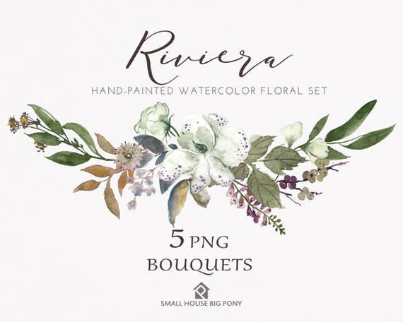 Watercolour Flower Clip Art Collection - Hand Painted Graphics,  hand drawn clip art,  flower clip art - Riviera Bouquet