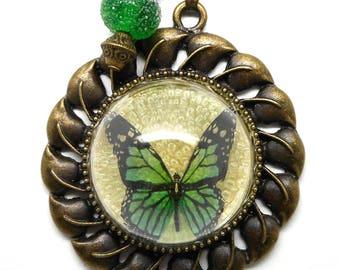 Long half globe Green Butterfly