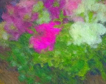 Pastel Love Flowers