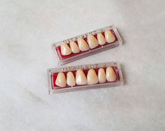 2 slats acrylic teeth / / plastic teeth