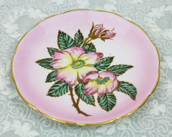 Vintage Taylor and Kent Pink Ombre Gradient Tinged Floral Green Leaves Branches English Bone China Orphan Teacup - Gifts for Her, Tea Party