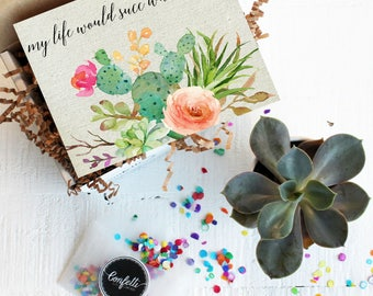 Mini My Life Would Succ Without You Gift Box - Thinking of You Gift | Thank You Gift | Friend Gift | Send a Gift | Succulent Gift
