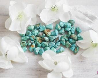Turquoise - Small Nugget - Happiness - Confidence - Genuine USA Turquoise - Gemstones - Healing Stones - Meditation Stones - Loose Stones