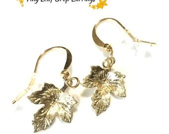 Tiny Gold Dangle Earrings, Dainty Maple Leaf Earrings. On Trend Earrings, Gold Drop Earring Gift, Pretty Earring Gift, Charming Earring Gift