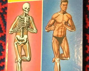Vintage Ladybird Book - Your Body