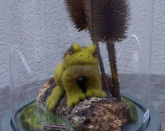 Needle Felted Frog in Glass Dome