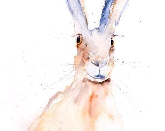 Hare No.3 - Signed limited Edition Print