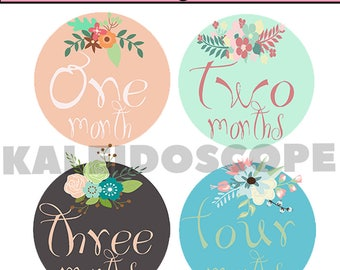 Baby Month Stickers Floral Baby Shower Monthly Baby Stickers Milestone Sticker Watercolor Flowers Moth Stickers Iron on INSTANT DOWNLOAD