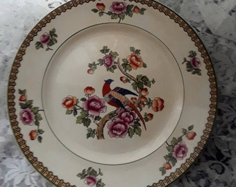 Set of KT & K  Pheasant SV appetizer, dessert, salad, or side plates
