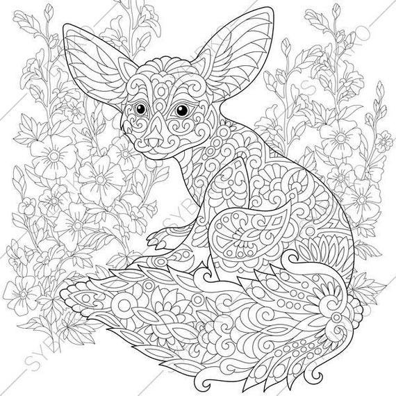 Fennec fox mallow flowers coloring pages animal coloring book pages for adults instant download print
