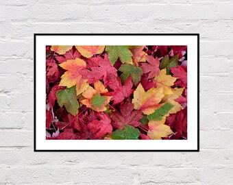 Autumn Leaves Print, Fall Decor, Fall Print, Autumn Art, Fall Printable, Autumn Print, Botanical Art, Large Poster Print, Digital Download