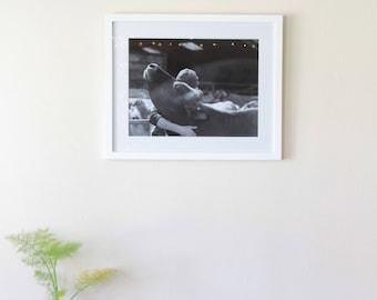 Embrace - Framed Photograph