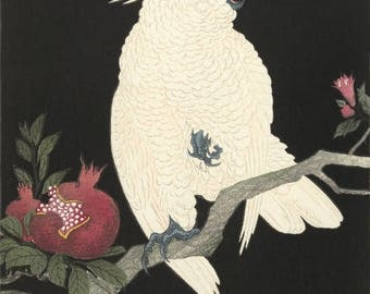 """Japanese Art Print """"Parrot with Pomegranate"""" by Ohara Koson, woodblock print reproduction, fine art, asian art, cultural art, Cockatoo"""