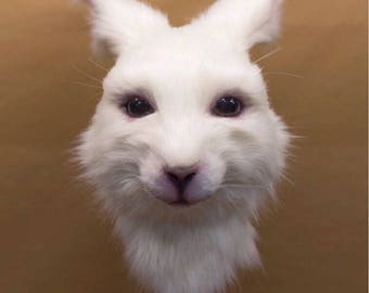 Mascara de conejo / Rabbit mask