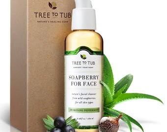Detox Facial Soap / Natural Face Wash / Oily Skin Face Wash / Oily Face / Gentle Facial / Aloe Vera Cleanser / Makeup Remover /