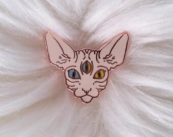 Sphynx Cat Cute