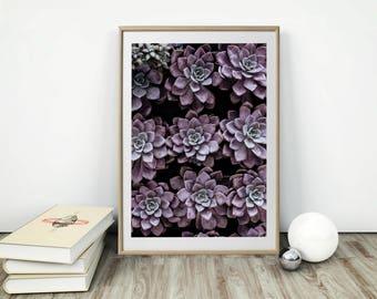 Botanical Print, Agave Wall Print, Cactus Print, Botanical Wall Art, Printable Wall Art, Agave Print, Scandinavian Wall Art, Desert Wall Art