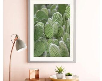 Cactus Wall Art, CACTUS PRINTABLE, Digital Download, Cactus Download, California Wall Art, Cactus Art Print, Cactus Photography Cactus Print