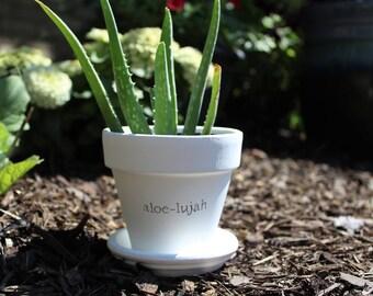 Aloe-lujah Pot