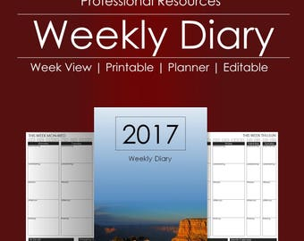 Weekly Diary and Planner   Printable Planner   Editable Diary