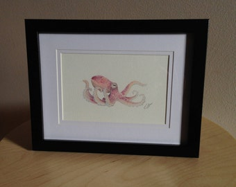 Framed watercolour painting  print of an Octopus