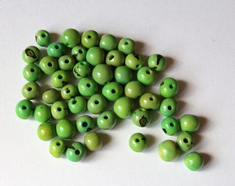 10 pearls plant, green tinted colors plant 8-10 mm acai seeds