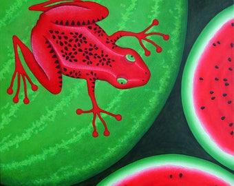 Melon frog, frog, image