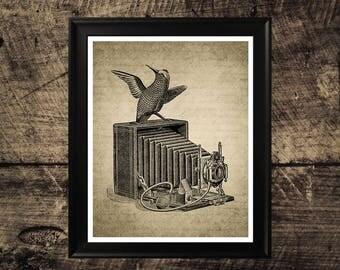 Photo camera with bird print, vintage camera print, home decor, photo camera wall art, printable wall design