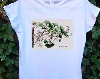Ginkgo biloba - Women's T-shirt